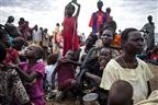 ONU precisa de 4,4 mil milhões de dólares para combater a fome