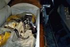 Carro fúnebre levava caixão repleto de droga