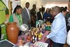 Presidente Nyusi recomenda MIC a regular a economia
