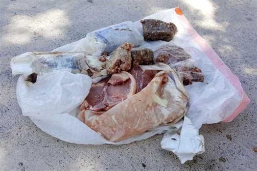 Sete quilos de carne de porco caíram do céu