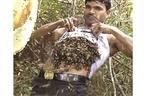 Homem transporta abelhas debaixo da t-shirt (video)
