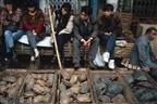 China: Mercados voltam a vender morcegos e a esfolar animais no chão