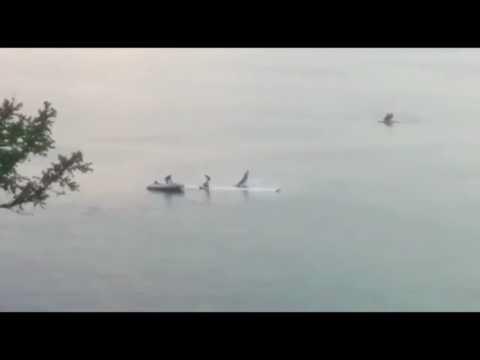 Avião despenha-se num lago e passageiros sobrevivem