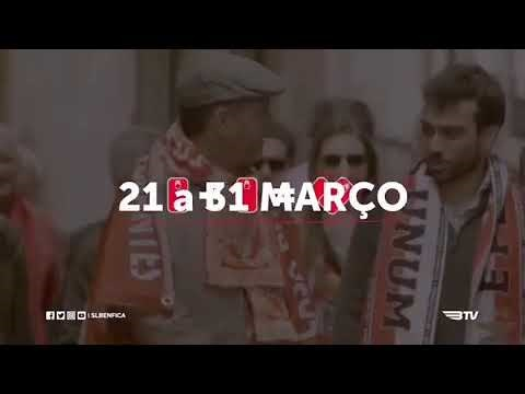 Benfica: ajuda Moçambique